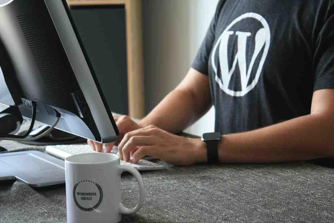 Comment annuler WordPress ?
